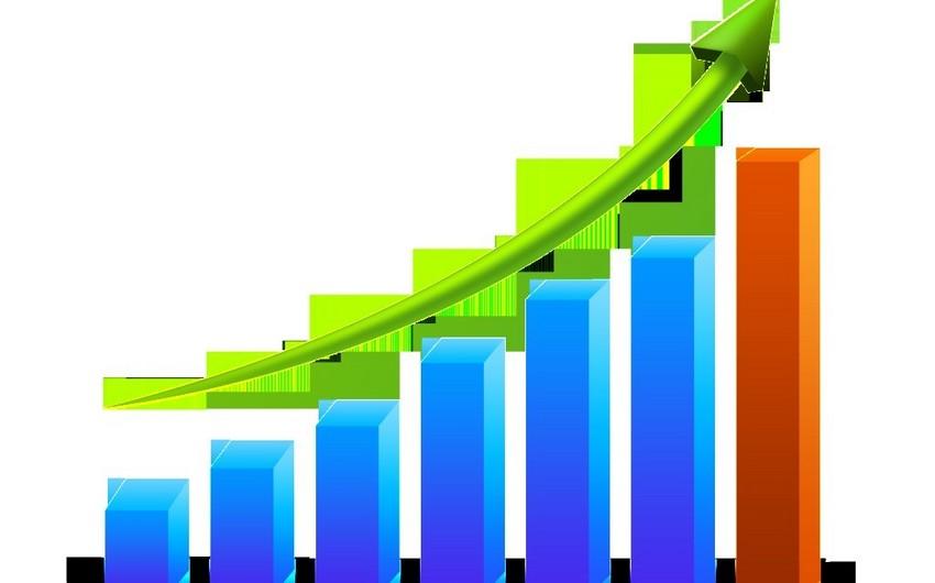 Maliyyə Monitorinqi Xidmətinə təqdim edilmiş əməliyyatların sayı 18% artıb