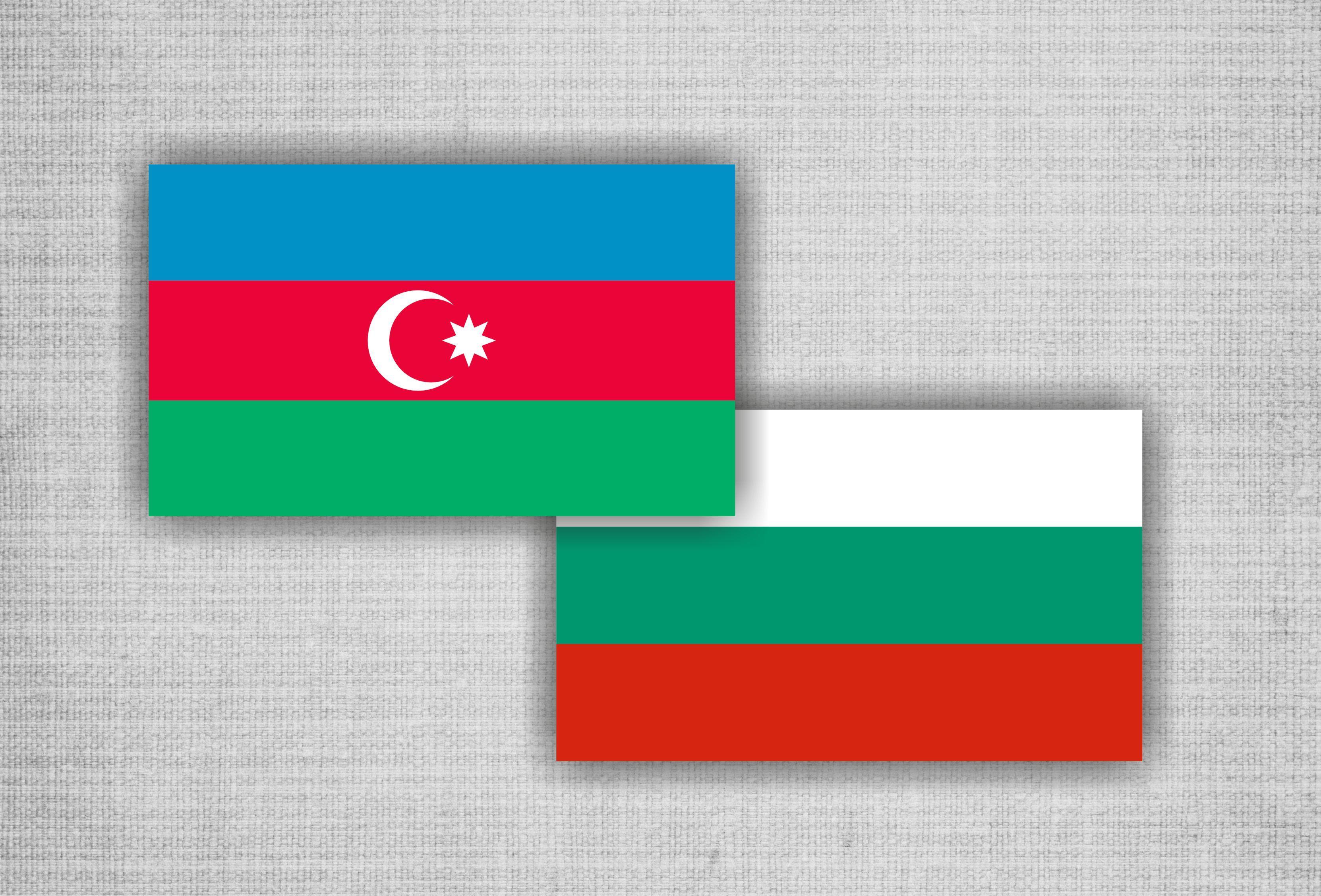 В Софии проходит конференция, посвященная 25-летию дипотношений между Азербайджаном и Болгарией
