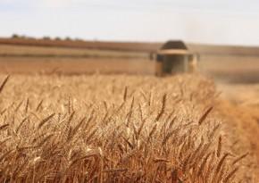 Azerbaijan's agrarian sector grows by over 2%