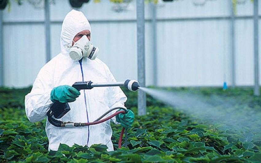 Pestisid və aqrokimyəvi maddələr satan 91 obyektdə yoxlamalar aparılıb