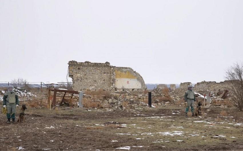 ANAMA: Cocuq Mərcanlıda 13 gündə 5 ədəd partlamamış hərbi sursat aşkarlanıb - FOTO
