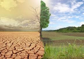ООН: Потепление климата на Земле не остановилось