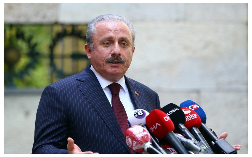 Mustafa Şentop:  -
