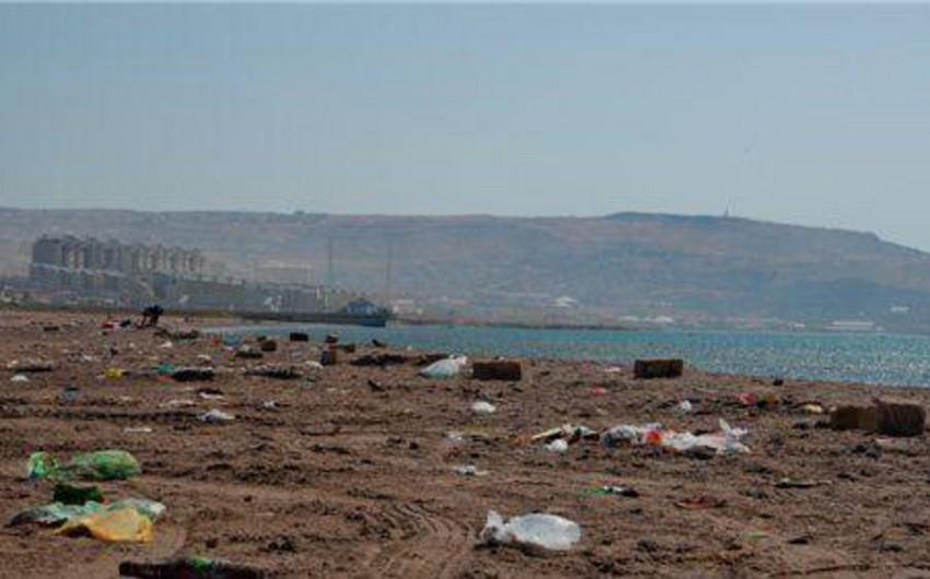 İslam Mustafayev: Xəzərin sahili daha çox plastik tullantılarla çirkləndirilir