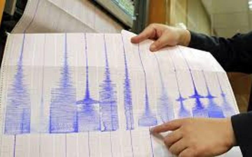 Землетрясение магнитудой 5,8 произошло в Новой Зеландии