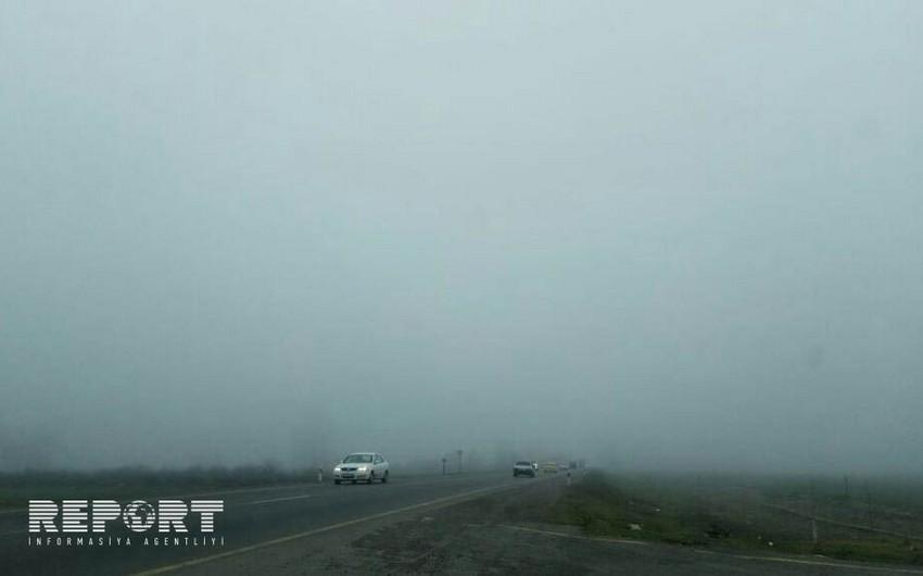 Qatı duman Tovuzda avtomobillərin hərəkətində çətinliklər yaradıb - FOTO