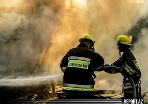 В Загатале сгорела ферма и грузовик