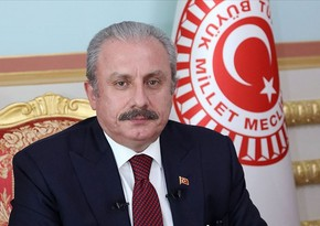 Mustafa Sentop: We honor all our dear martyrs