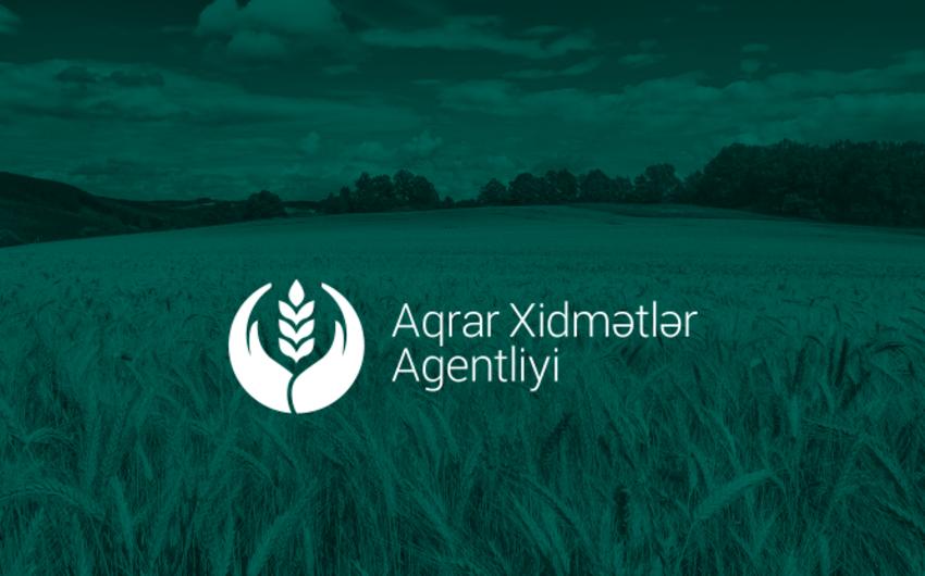 Aqrar Xidmətlər Agentliyi dövlət qeydiyyat nişanları alır