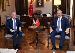 Mevlüt Çavuşoğlu meets with Georgian Foreign Minister