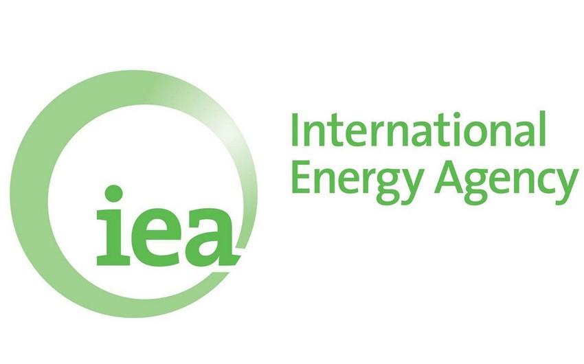İEA-nın 2019-2020-ci illər üçün neftə tələbatın artımına dair proqnozu dəyişməyib