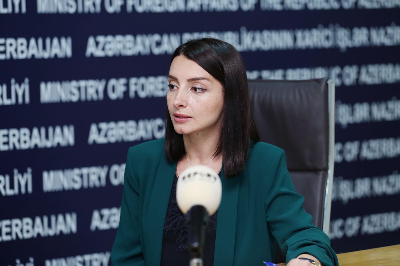Leyla Abdullayeva: Azərbaycan Avropa İttifaqı ilə bərabər hüquqlu və birgə maraqlara əsaslanan saziş imzalamağa hazırdır - MÜSAHİBƏ