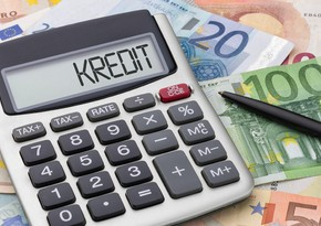 Samirə Musayeva: Yeni bank kreditlərinə dövlət zəmanəti veriləcək