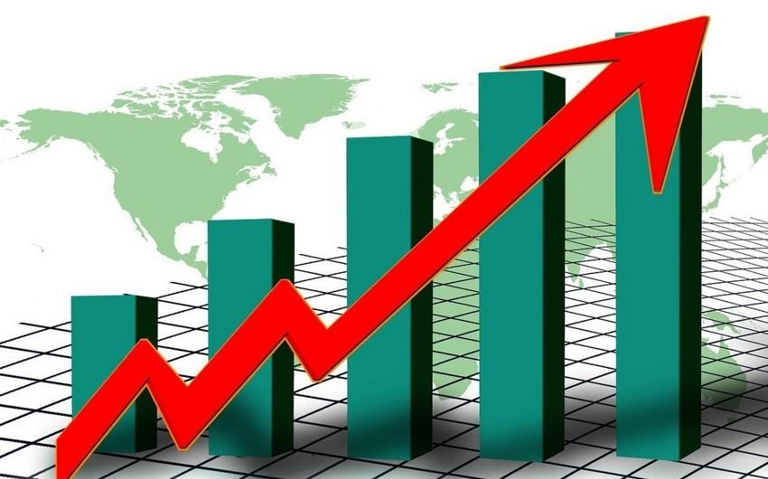 2024-cü ildə dünya iqtisadiyyatına təsir göstərəcək ölkələr bəlli olub