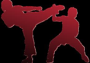 Karateçilərimiz Karate1 Premyer liqa turnirində mübarizə aparacaq