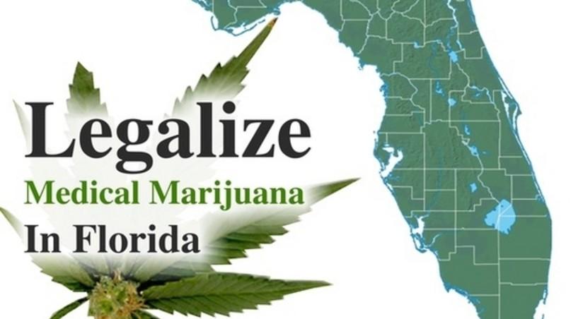 Статус марихуаны во флориде купить марихуану в торе