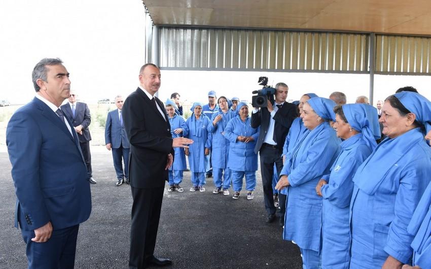 Prezident: Gələn il pambıq istehsalı 300 min tona, hər hektardan məhsuldarlıq isə 30 sentnerə çatdırılmalıdır
