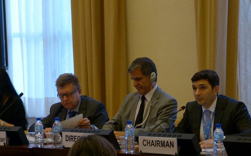 Azərbaycan BMT Avropa İqtisadi Komissiyasının Dayanıqlı Enerji Komitəsinin sessiyasında iştirak edir