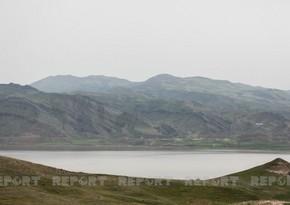 Замминистра: Азербайджан стал свидетелем экоцида на освобожденных землях