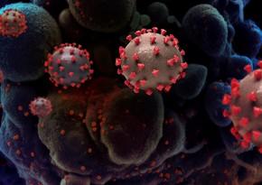 Врач рассказал, что мешает выработке антител у переболевших COVID-19