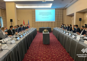 Azərbaycan-Xorvatiya Hökumətlərarası Komissiyasının 2-ci iclası keçirilib