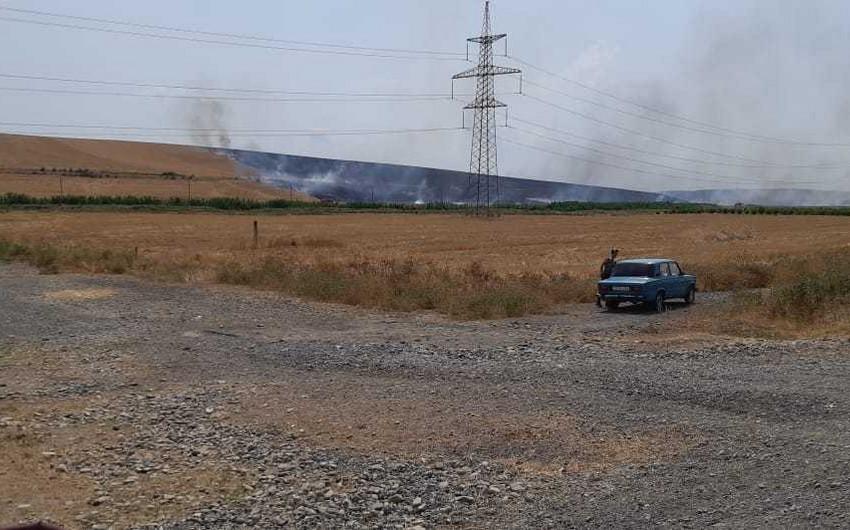 Göyçayın 3 kəndində 100 hektara yaxın otlaq və taxıl sahələri yanır