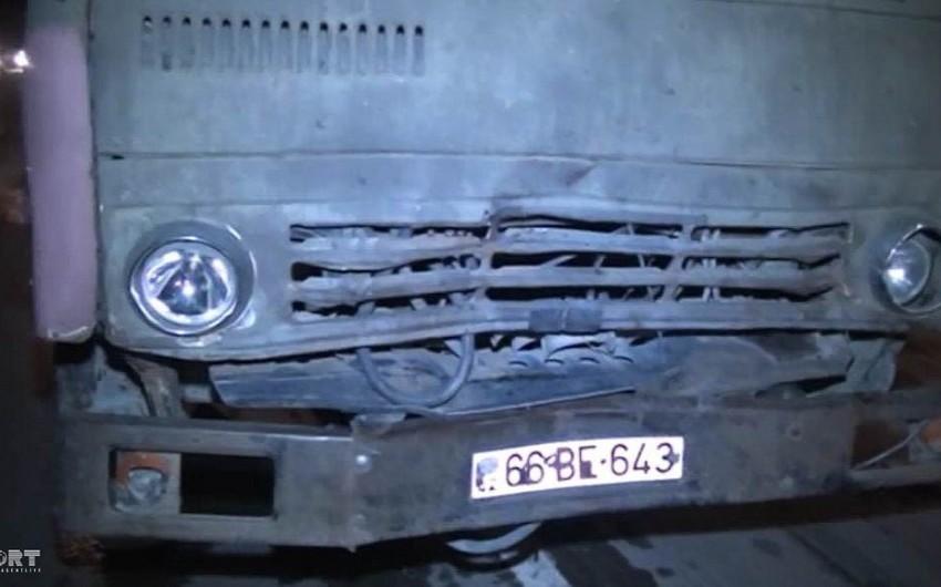 Şirvanda yük avtomobili iribuynuzlu mal-qaranı vuraraq öldürüb - FOTO