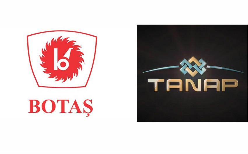 Состоялась встреча официальных представителей BOTAŞ и TANAP