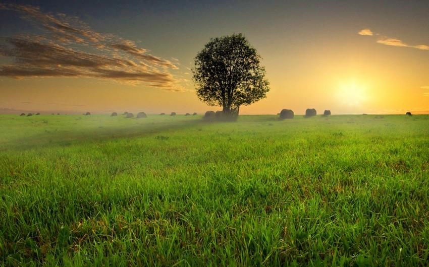 Şənbə gününün havası açıqlandı