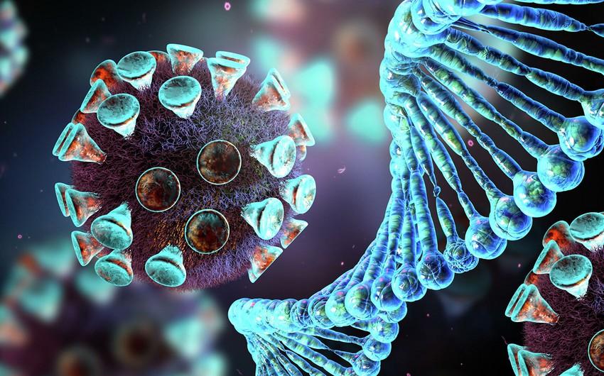 Ekspert: Koronavirusun Uhanda ortaya çıxmasına dair sübut yoxdur
