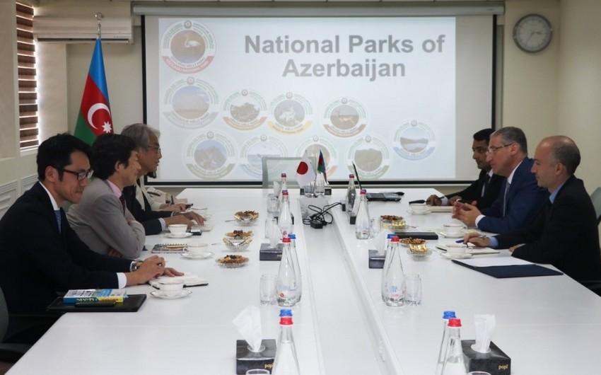 Azərbaycan-Yaponiya arasında ekoturizm sahəsində potensial əməkdaşlıq imkanları müzakirə olunub
