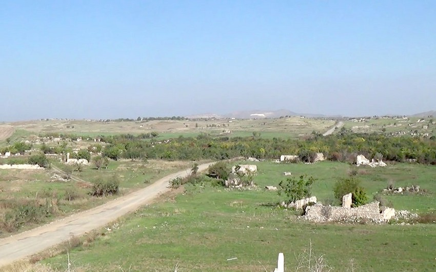 Armenians keep exterminating nature on occupied territories of Azerbaijan: Ministry of Ecology
