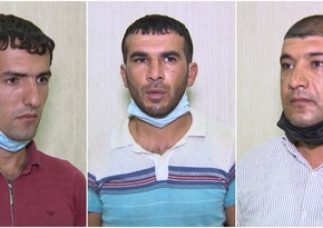 Пытавшиеся попасть из Баку в район граждане получили по 10 суток