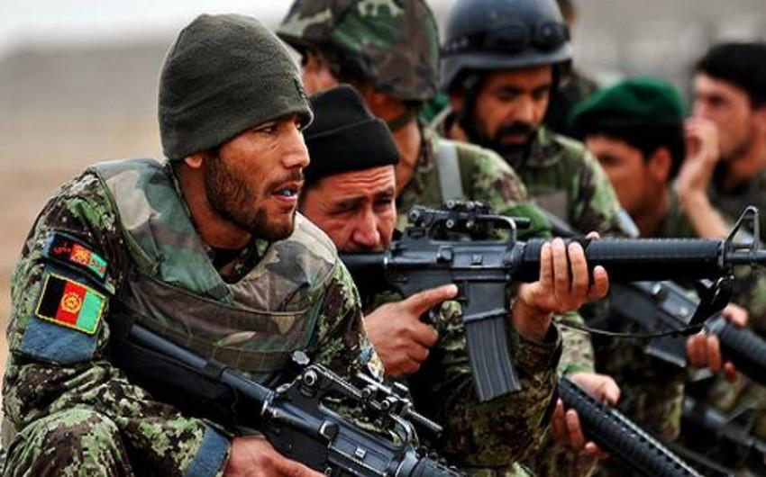 Əfqanıstan ordusu sutka ərzində təxminən 100 yaraqlını öldürüb