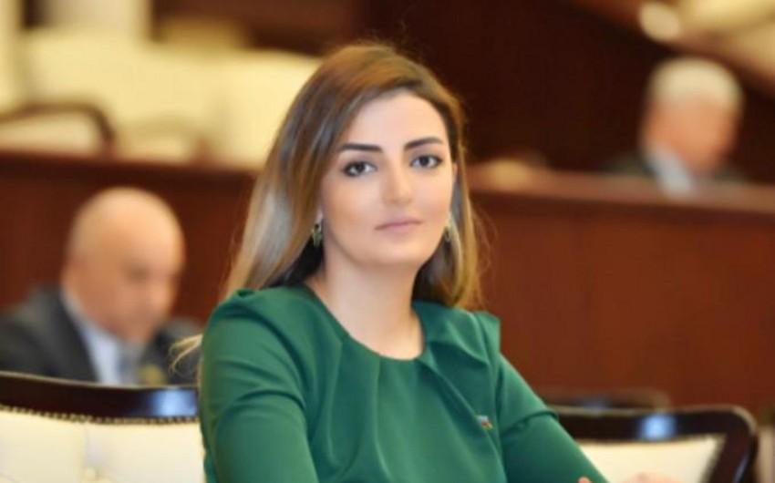 Könül Nurullayeva: Beynəlxalq təşkilatlar Ermənistanın destruktiv davranışlarına sərt reaksiya verməlidir