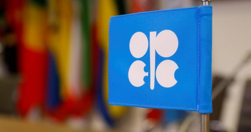 OPEC Azərbaycanda maye karbohidrogenlər üzrə hasilat proqnozunu açıqlayıb