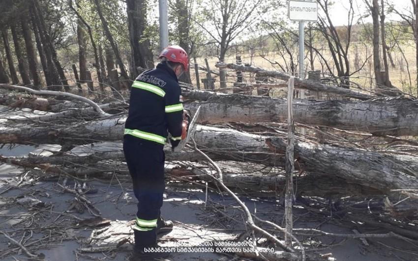 Gürcüstanda kəskin hava ciddi fəsadlar yaradıb