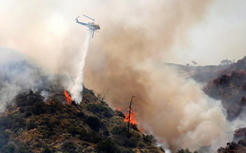 Kaliforniyada meşə yanğınları zamanı 2 nəfər ölüb