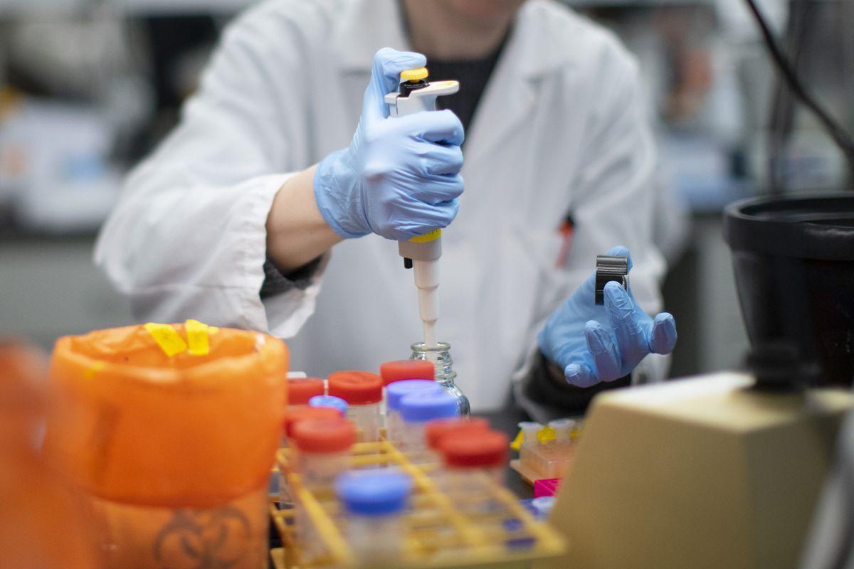Koronavirus imtahanı - virusu kim yayıb? - ŞƏRH   Report.az