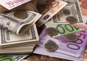 Dollar rises against euro on data from US labor market
