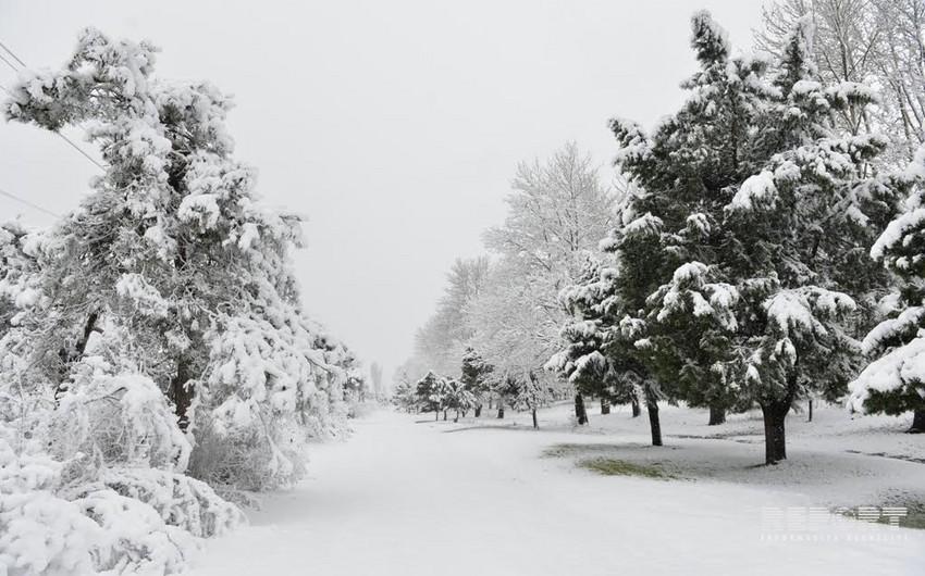 Сегодня в Азербайджане наступает астрономическая зима
