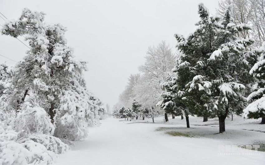 This evening Azerbaijan welcomes winter season