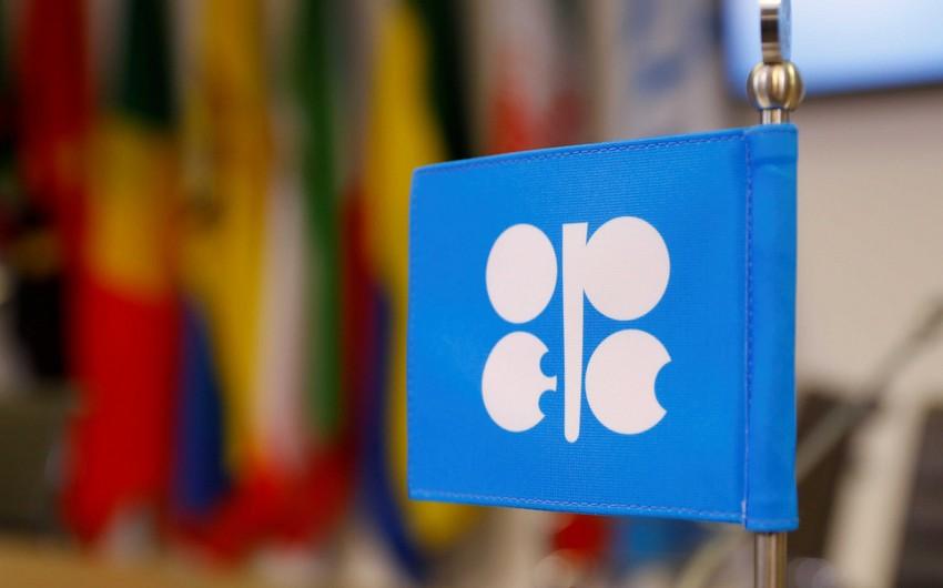 Neft hasilatının ixtisarı ilə bağlı kompensasiya məsələsi qaldırılmayacaq