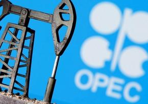 OPEC Azərbaycan üzrə neft hasilatı proqnozunu dəyişdirməyib
