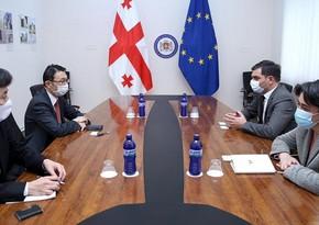"""Gürcüstan """"GUAM-Yaponiya"""" formatında əməkdaşlığı dərinləşdirəcək"""