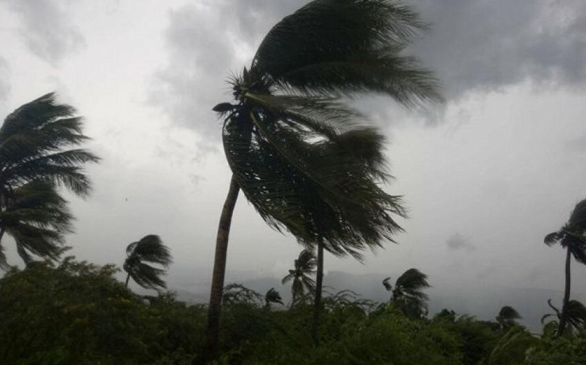 Tropik Fernand qasırğası Meksika sahillərinə çatıb