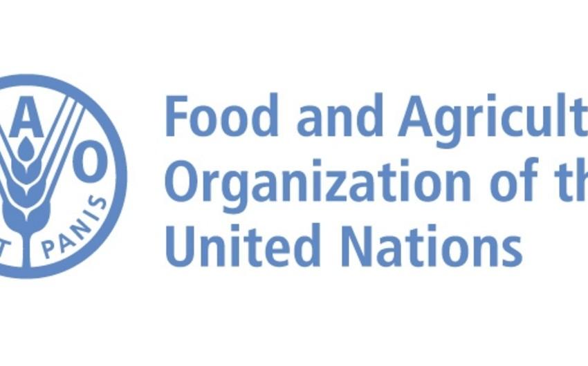 Azərbaycanla FAO arasında tərəfdaşlığa dair saziş təsdiqlənib