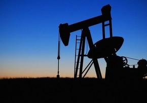 OPEC ölkələri neft hasilatı üzrə sazişi 105 % yerinə yetirib