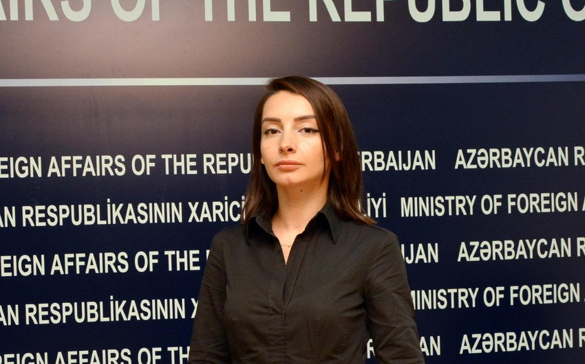 Leyla Abdullayeva: Co-chairs act in accordance with the mandate