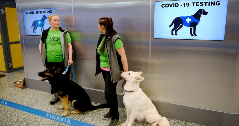 Helsinki hava limanında koronavirusu aşkarlamağın yeni üsulunu tapıblar